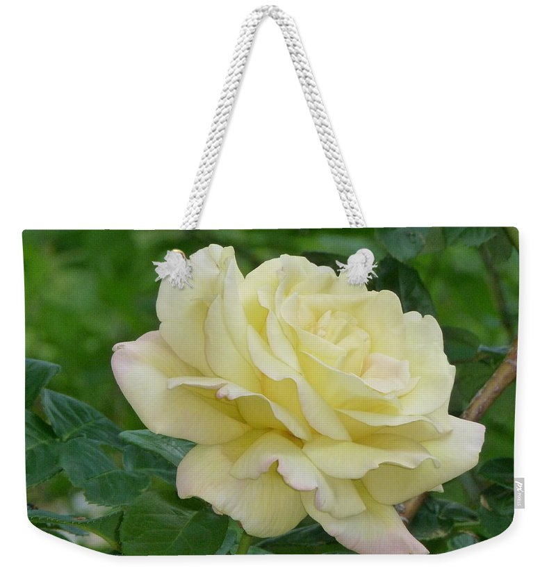 Rose Weekender Tote Bag featuring the photograph Yellow Rose by Karen Capehart