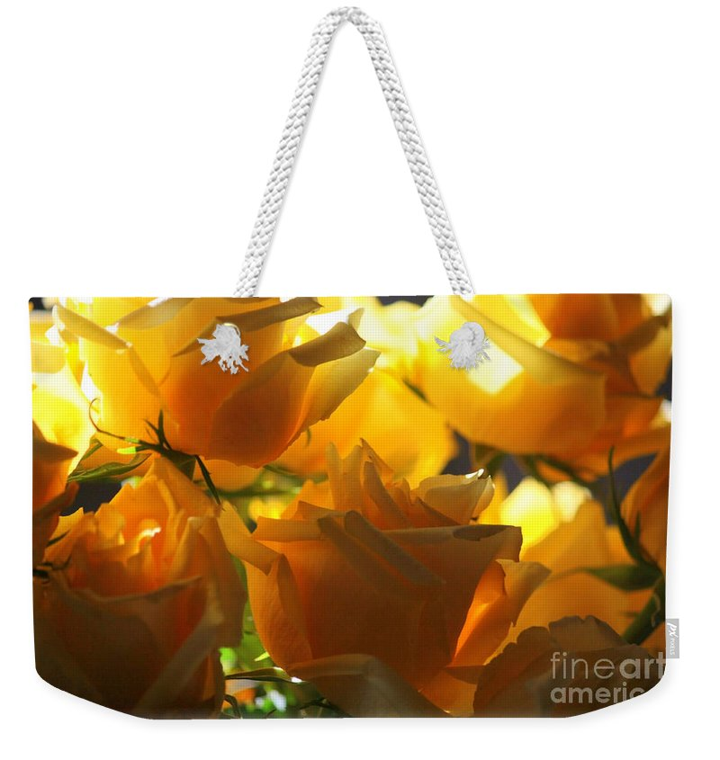 Yellow Roses Weekender Tote Bag featuring the photograph Yellow Roses And Light by Carol Groenen
