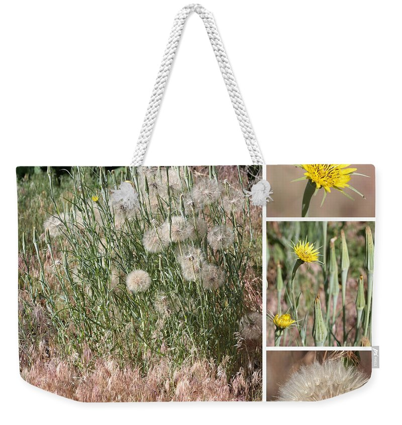 Wildflower Weekender Tote Bag featuring the photograph Yellow Salsify Collage by Carol Groenen