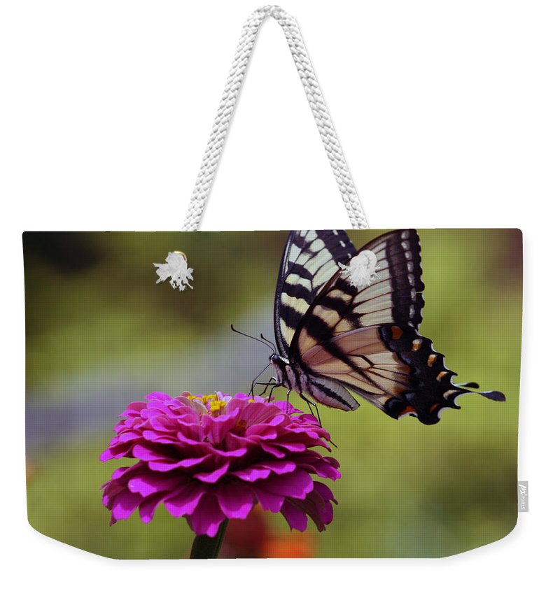 Nature Weekender Tote Bag featuring the photograph Yellow Tiger Swallowtail Butterfly by Kay Novy