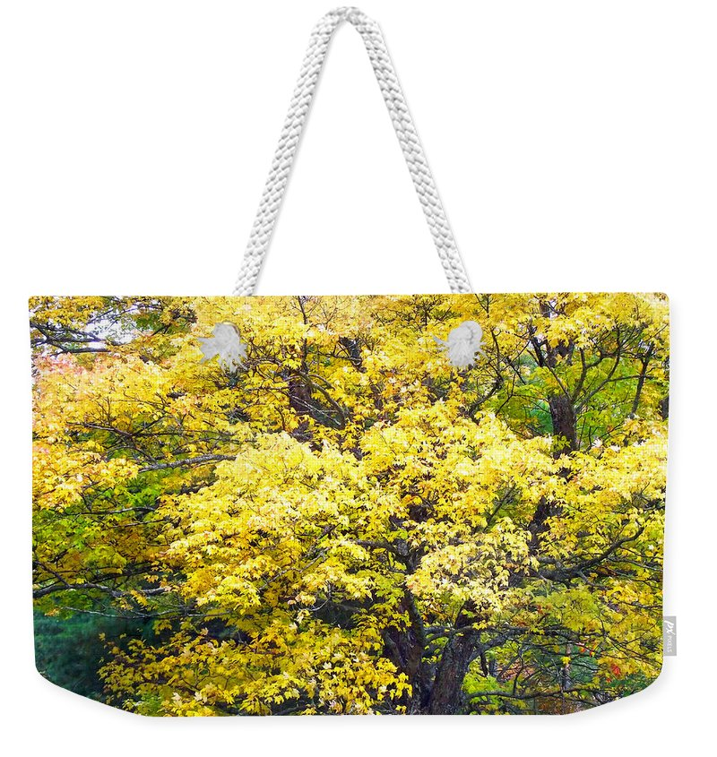 Trees Weekender Tote Bag featuring the photograph Yellow Tree by Duane McCullough