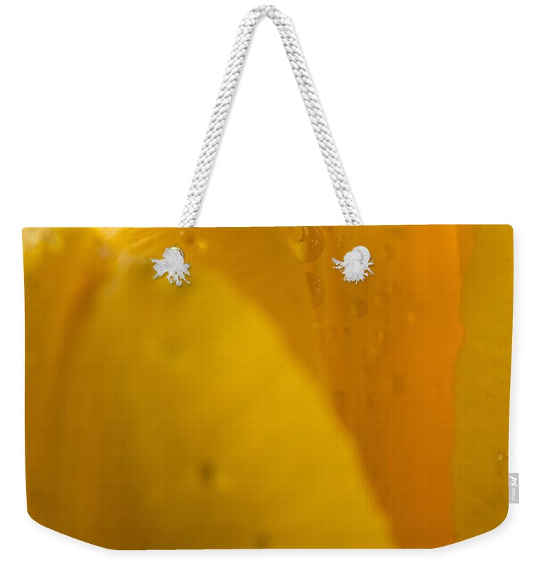 Yellow Weekender Tote Bag featuring the photograph Yellow Tulip by Steve Gadomski