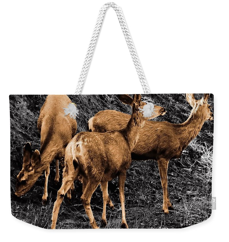 Digital Selective Color Photo Weekender Tote Bag featuring the digital art Young And Hungry Sc by Tim Richards