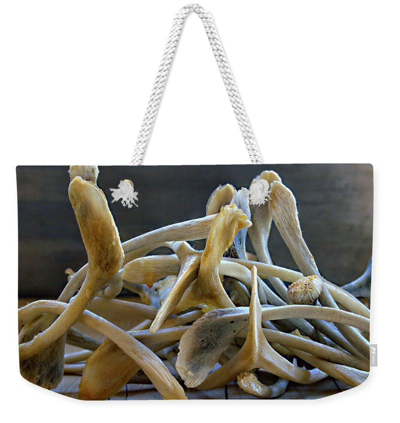 Wishes Weekender Tote Bag featuring the photograph Your Wishes Await by Joe Schofield