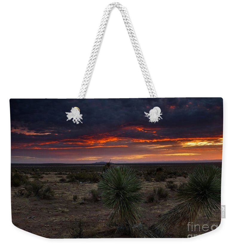 Yucca Weekender Tote Bag featuring the photograph Yucca Sunset by Mike Dawson
