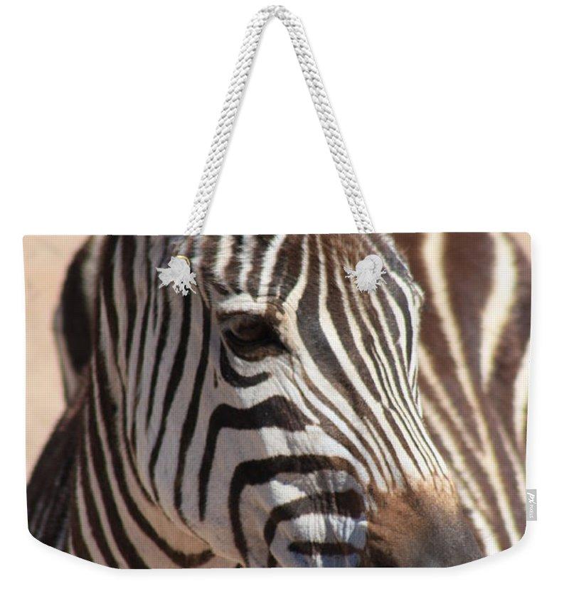 Zebra Weekender Tote Bag featuring the photograph Zebra by Brandi Maher