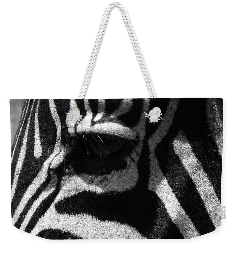 Africa Weekender Tote Bag featuring the photograph Zebra Eye by Aidan Moran