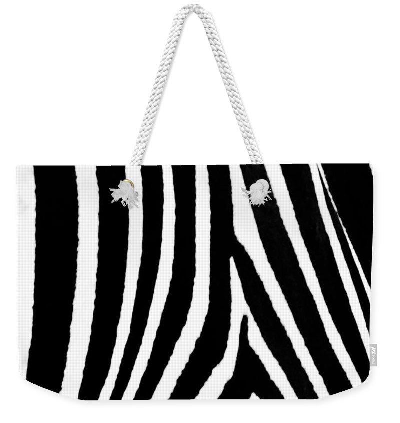 Zebra Weekender Tote Bag featuring the photograph Zebra Hide by Timothy Flanigan and Debbie Flanigan Nature Exposure