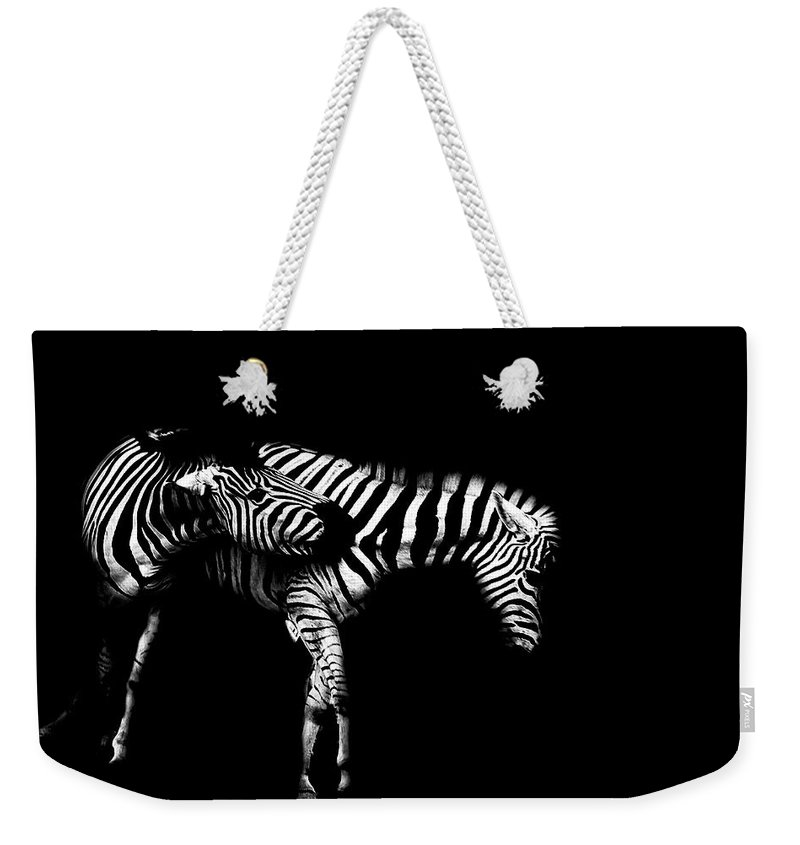 Zebra Weekender Tote Bag featuring the photograph Zebra Stripes by Martin Newman