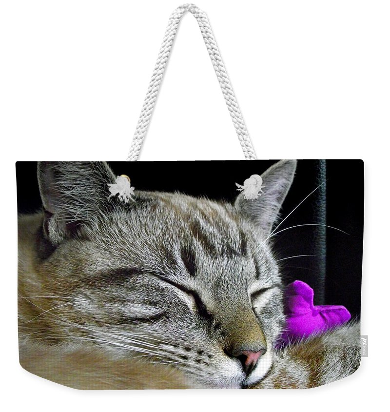 Duane Mccullough Weekender Tote Bag featuring the photograph Zing The Cat Sleeping by Duane McCullough