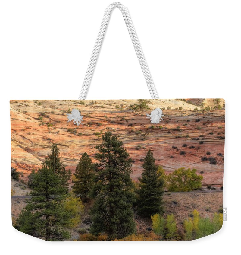 Hdr Weekender Tote Bag featuring the photograph East Zion Canyon Hdr by Sandra Bronstein
