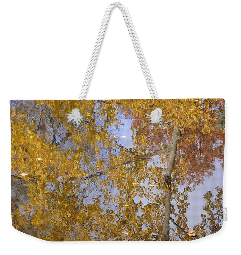 Fall Weekender Tote Bag featuring the photograph Reflecting Cedar by Joseph Yarbrough