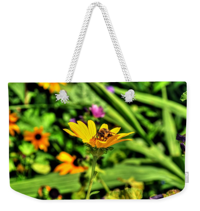 Weekender Tote Bag featuring the photograph 002 Busy Bee Series by Michael Frank Jr