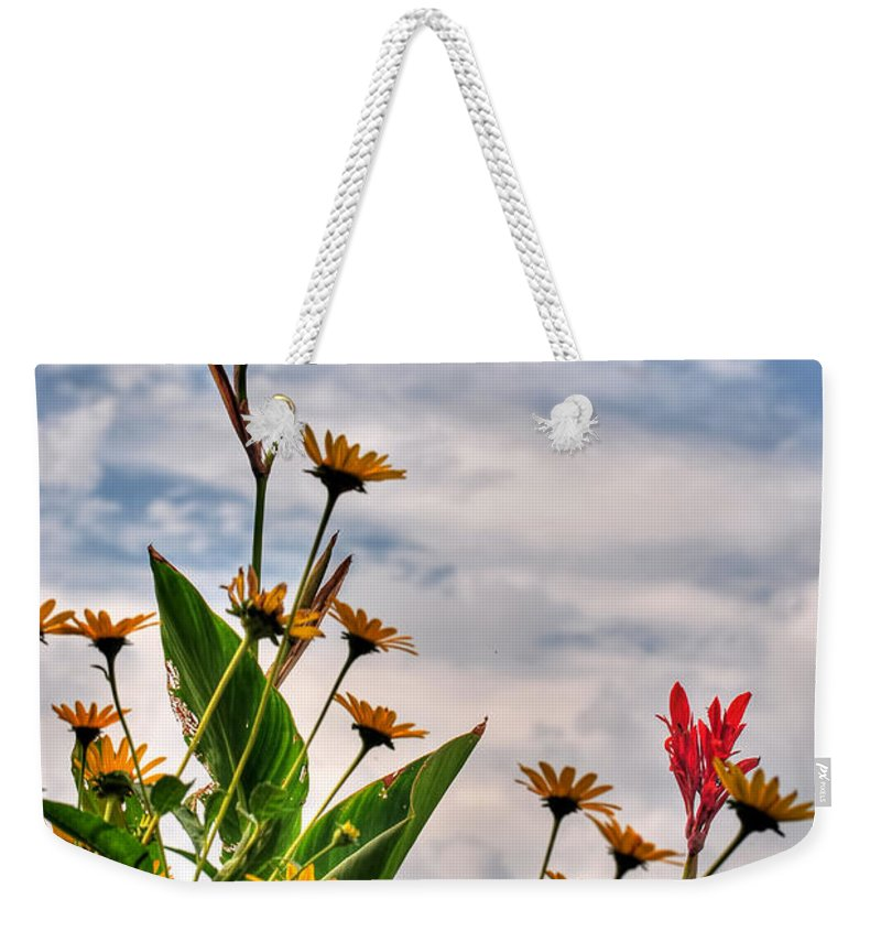 Weekender Tote Bag featuring the photograph 005 Summer Air Series by Michael Frank Jr