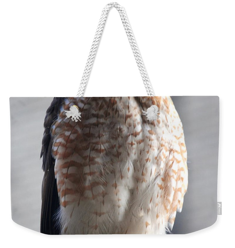 Weekender Tote Bag featuring the photograph 06 Falcon by Michael Frank Jr