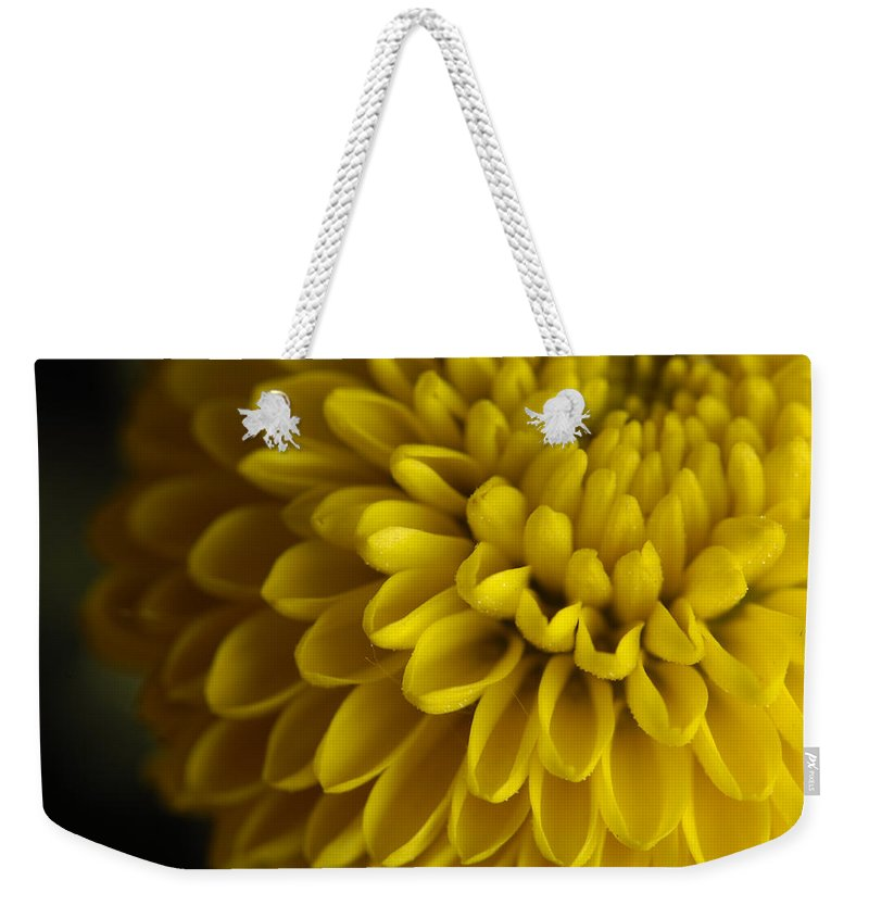 Photography Weekender Tote Bag featuring the photograph A Bouquet Of Button Chrysanthemums by Joel Sartore