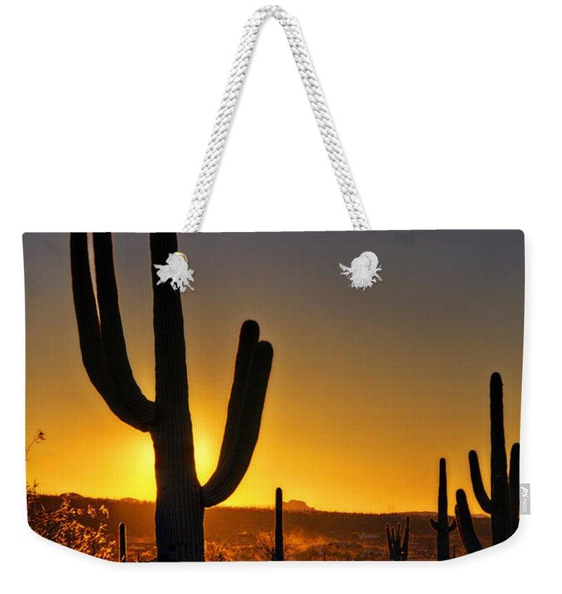 Sunrise Weekender Tote Bag featuring the photograph A Saguaro Sunrise by Saija Lehtonen