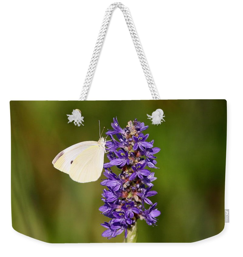 Weekender Tote Bag featuring the photograph All Alone by Travis Truelove