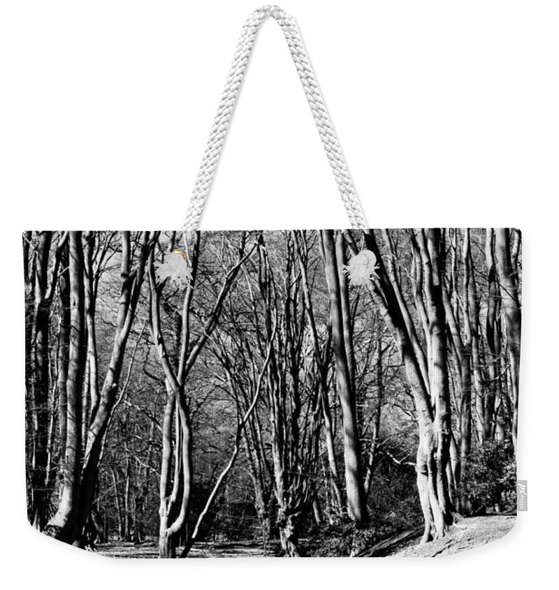 Ambresbury Weekender Tote Bag featuring the photograph Ambresbury Banks Bronze Age Fortification by David Pyatt
