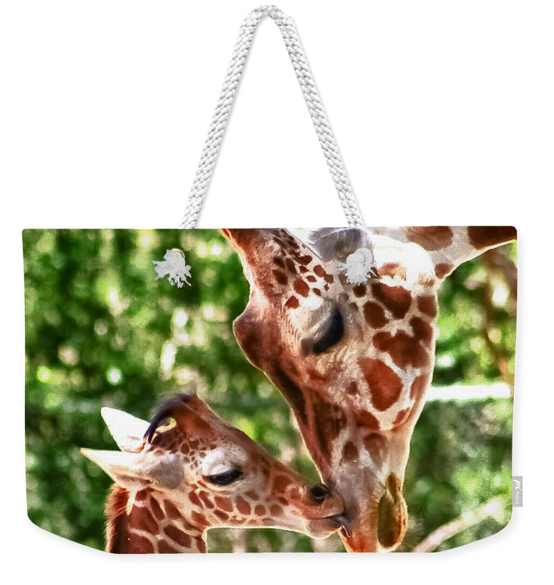 Colorado Weekender Tote Bag featuring the photograph Appreciation by John K Sampson