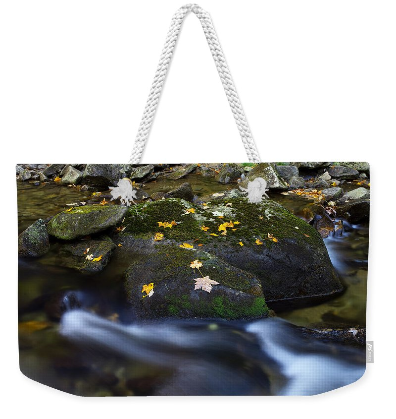 Stream Weekender Tote Bag featuring the photograph Autumn by Ivan Slosar