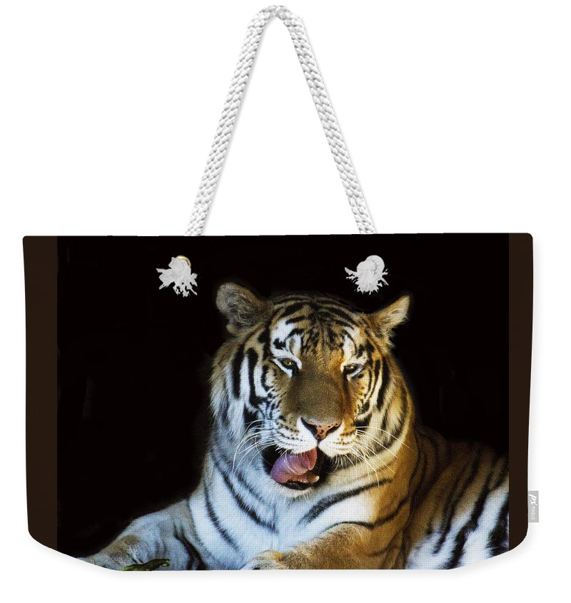 Animal Weekender Tote Bag featuring the photograph Awaking Tiger by Suanne Forster