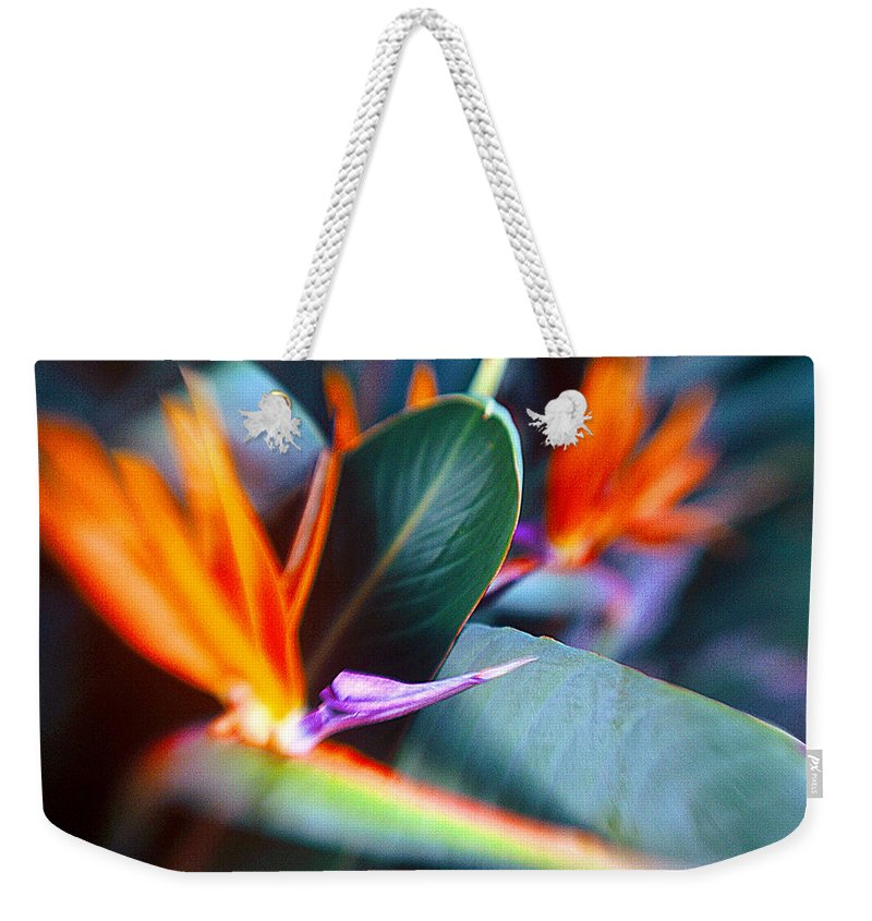Flower Weekender Tote Bag featuring the photograph Bird Of Paradise by La Rae Roberts