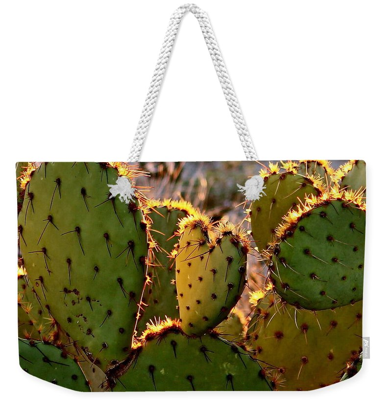 Cactus Weekender Tote Bag featuring the photograph Cactus Heart In Sunset by Kume Bryant