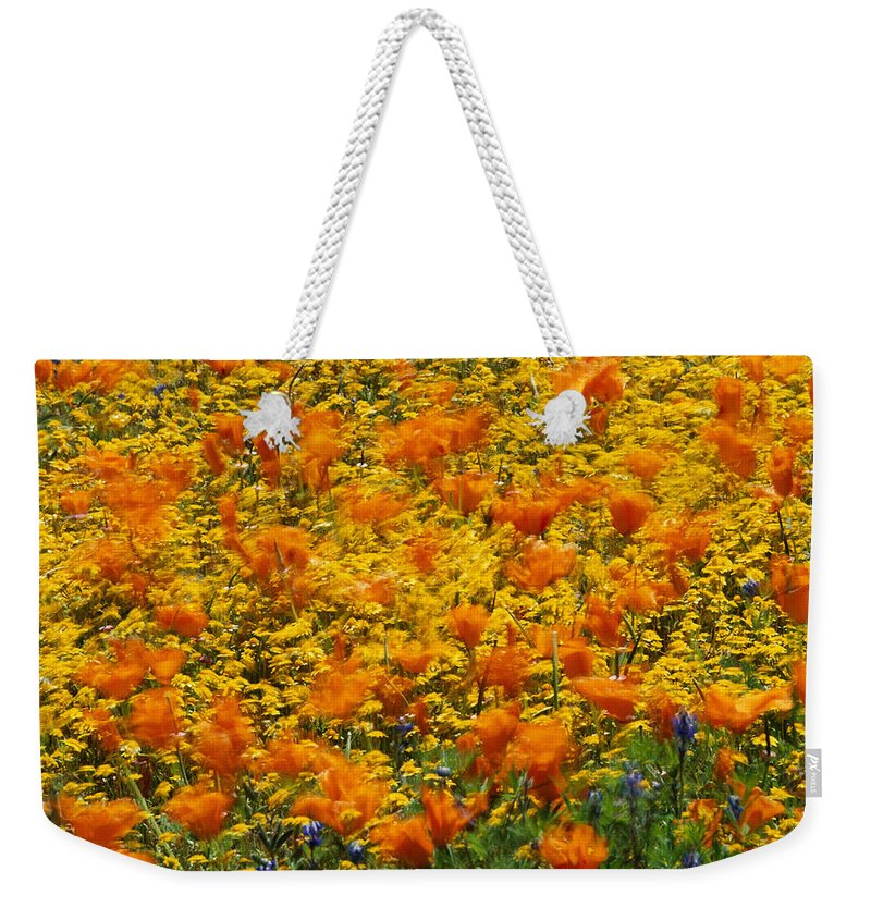 Fields Weekender Tote Bag featuring the photograph California Poppies And Goldfields Dance by Jonathan Blair