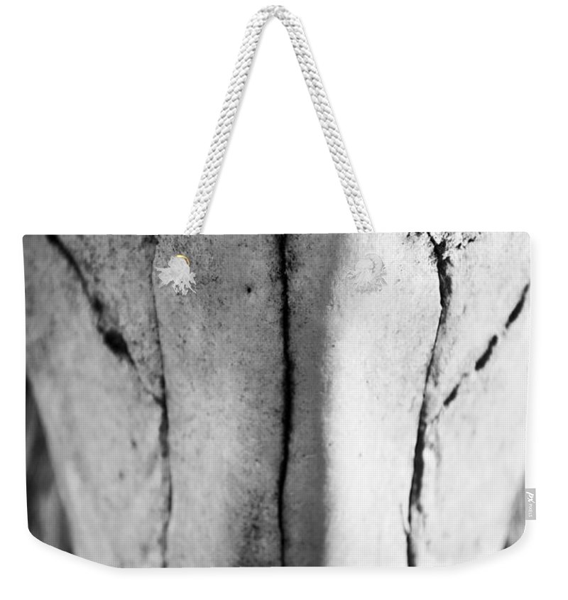 Black Weekender Tote Bag featuring the photograph Cow Skull by Kacy Taylor