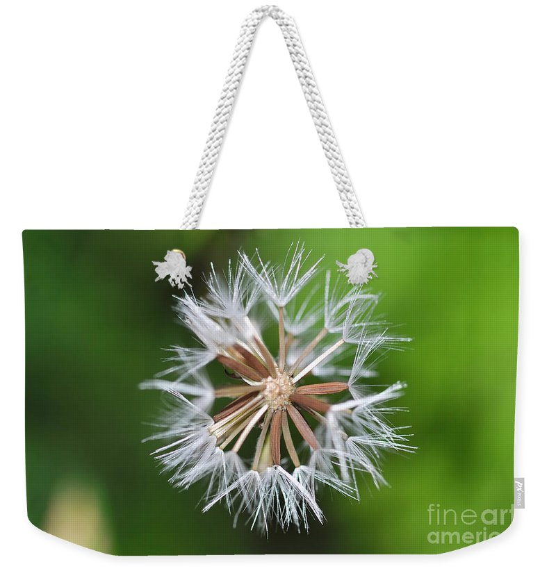 Dandelion Weekender Tote Bag featuring the photograph Dandelion by Mats Silvan