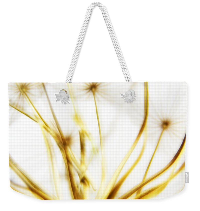 Abstract Weekender Tote Bag featuring the photograph Dandelion by Stelios Kleanthous