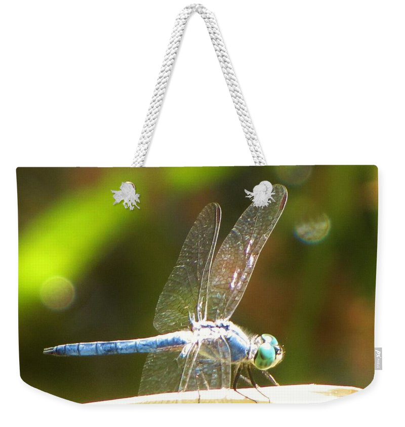 Dragonfly Weekender Tote Bag featuring the photograph Dragonfly by Michelle Cassella