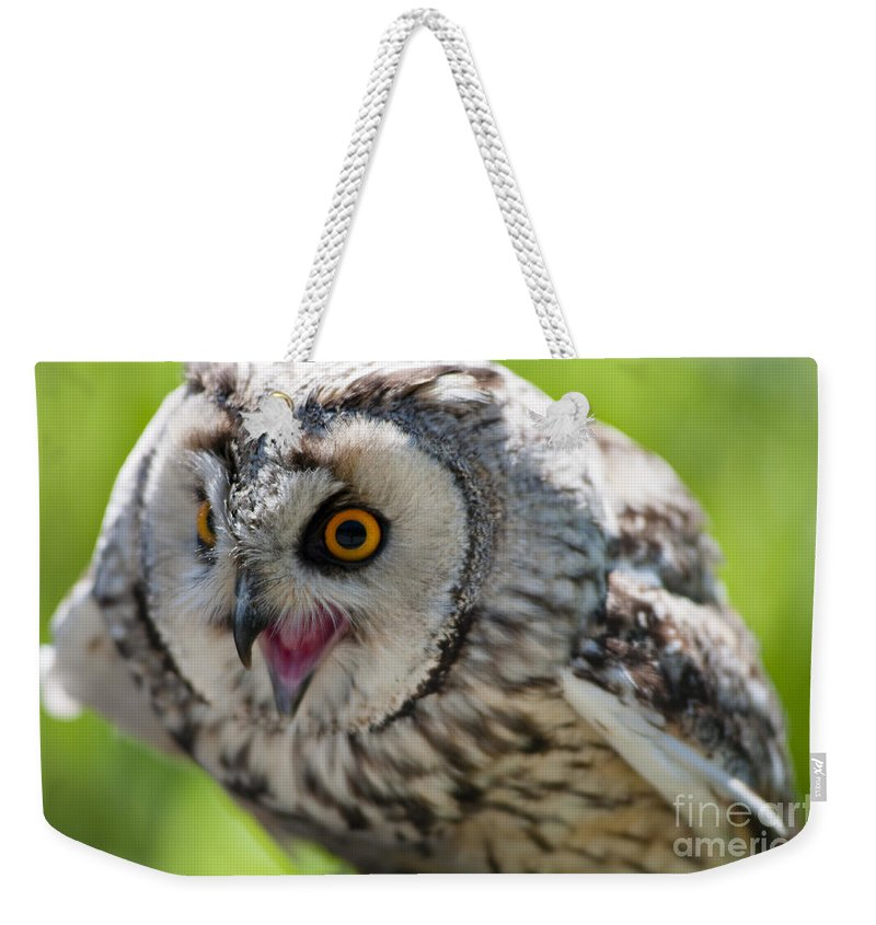 Aggession Weekender Tote Bag featuring the photograph Eagle Owl by Andrew Michael