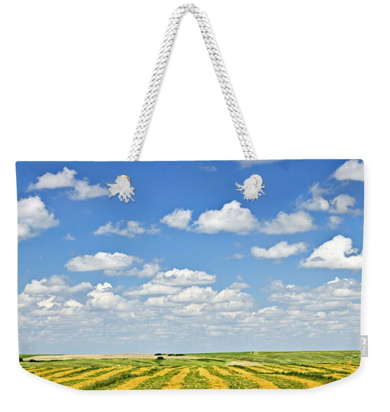Agriculture Weekender Tote Bag featuring the photograph Farm Field At Harvest In Saskatchewan by Elena Elisseeva