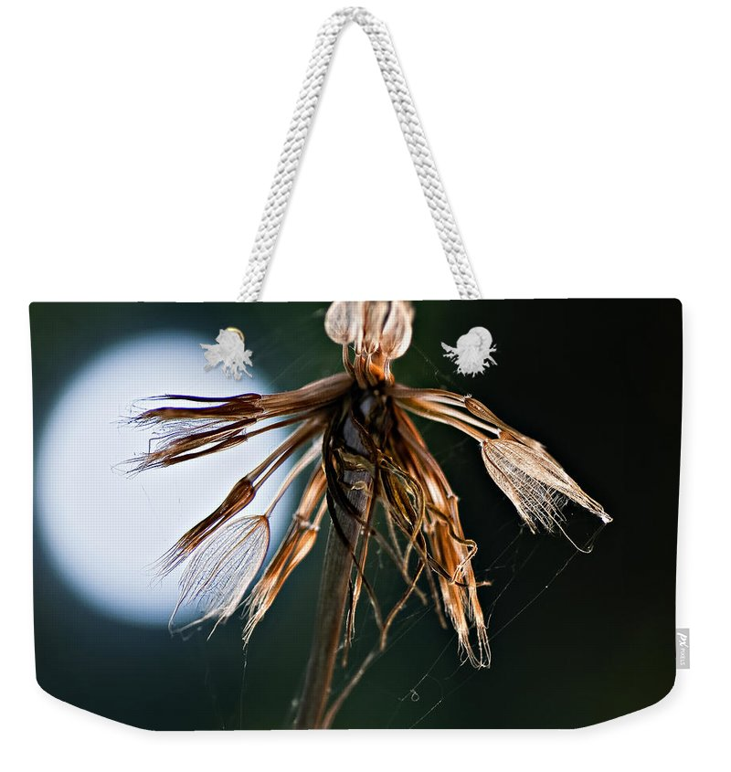 Weed Weekender Tote Bag featuring the photograph Finale by Steve Harrington