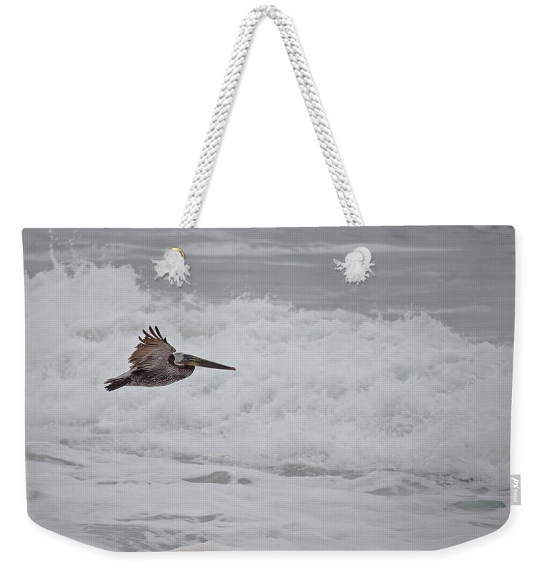 Pelican Weekender Tote Bag featuring the photograph flying Pelican by Ralf Kaiser