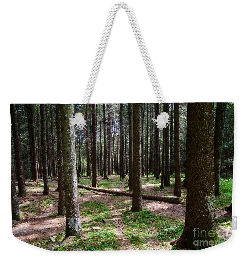 Forest Weekender Tote Bag featuring the photograph Forest by Mats Silvan