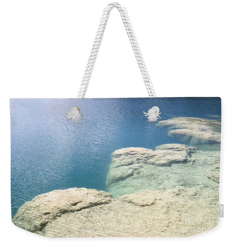Reef Weekender Tote Bag featuring the photograph Freshwater Reef by Ted Kinsman