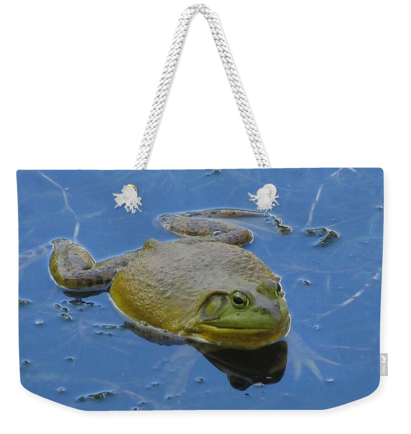 Nature Weekender Tote Bag featuring the photograph Frog In Pond by Jeannie Kohut