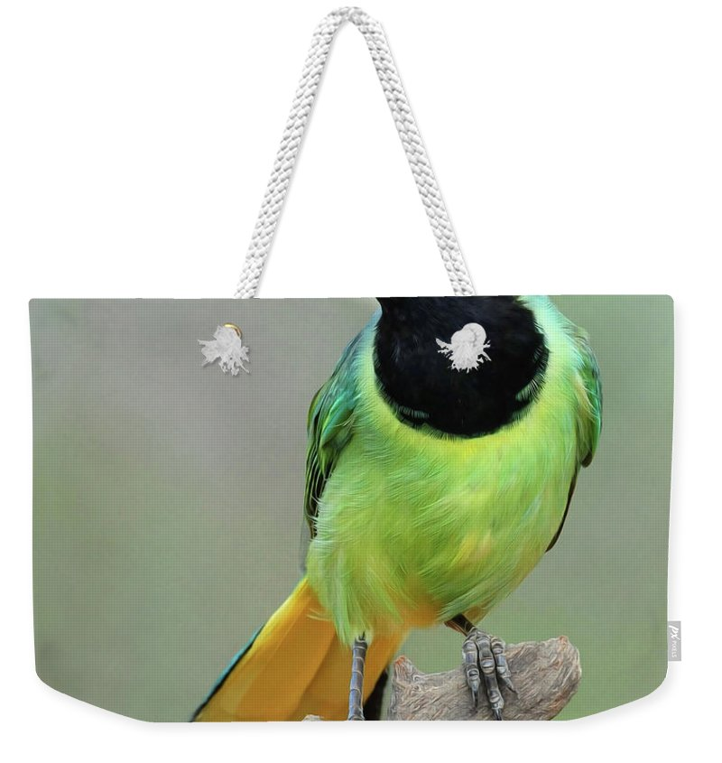 Green Jay Weekender Tote Bag featuring the photograph Green Jay by Dave Mills