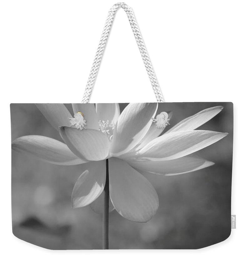 Lotus Weekender Tote Bag featuring the photograph I Love Lotus by Sabrina L Ryan