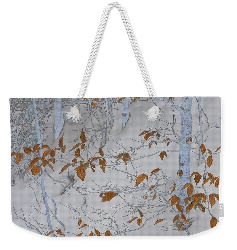 Winter Weekender Tote Bag featuring the photograph Ironwood In The Snow by Ron Jones