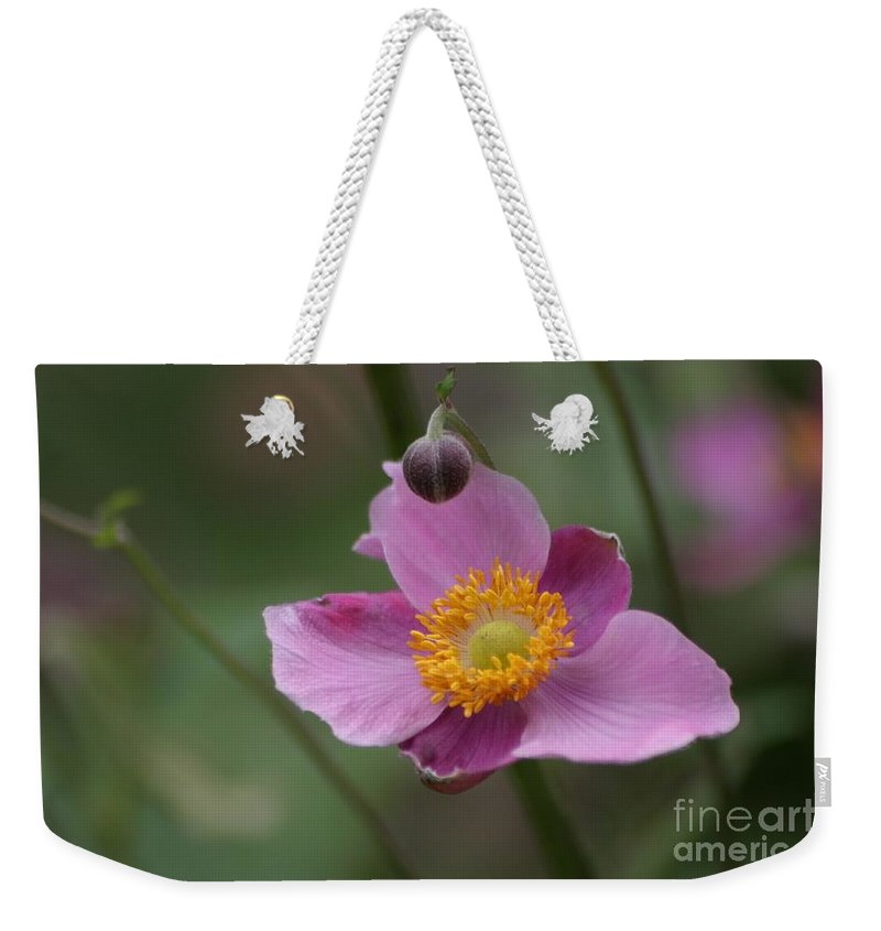 Floral Weekender Tote Bag featuring the photograph Japanese Anemone by Living Color Photography Lorraine Lynch