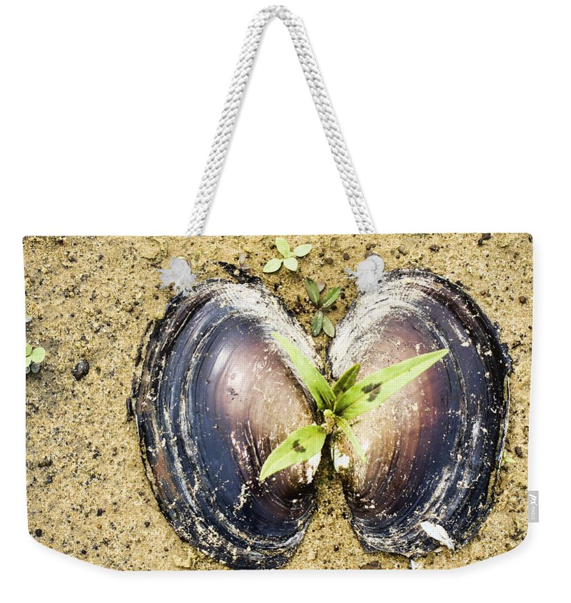 Freshwater Mussels Shell Weekender Tote Bag featuring the photograph Life And Death by Douglas Barnard