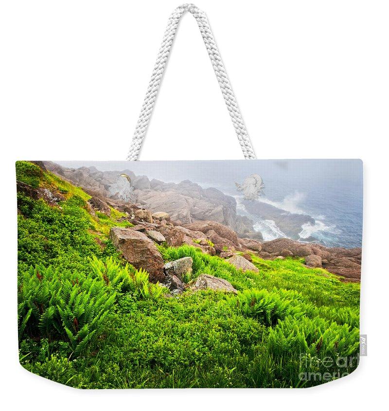 Coast Weekender Tote Bag featuring the photograph Ocean Below by Elena Elisseeva
