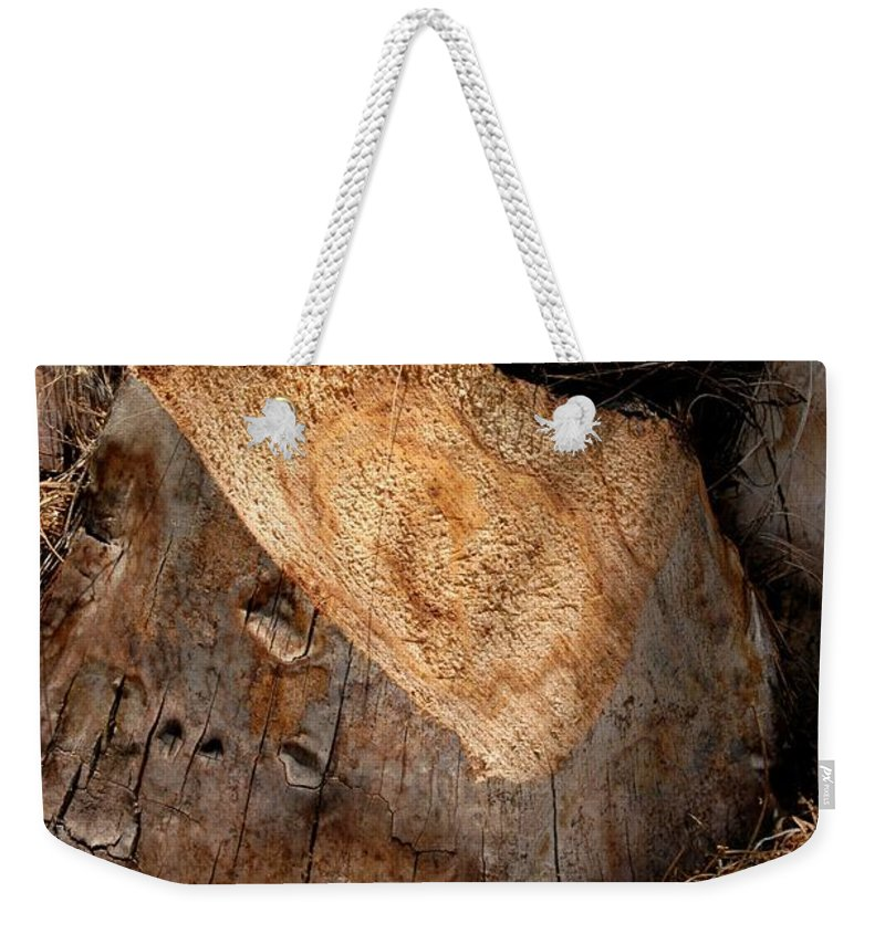 Cur Palms Weekender Tote Bag featuring the photograph Palm by Joseph Yarbrough