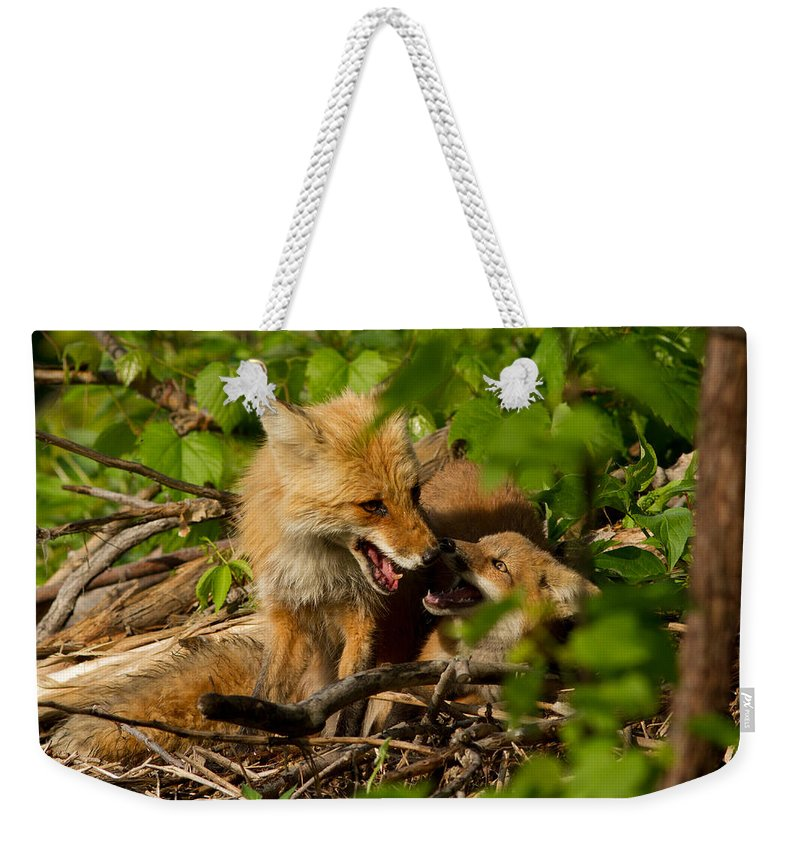 Play Weekender Tote Bag featuring the photograph Playtime by Mircea Costina Photography