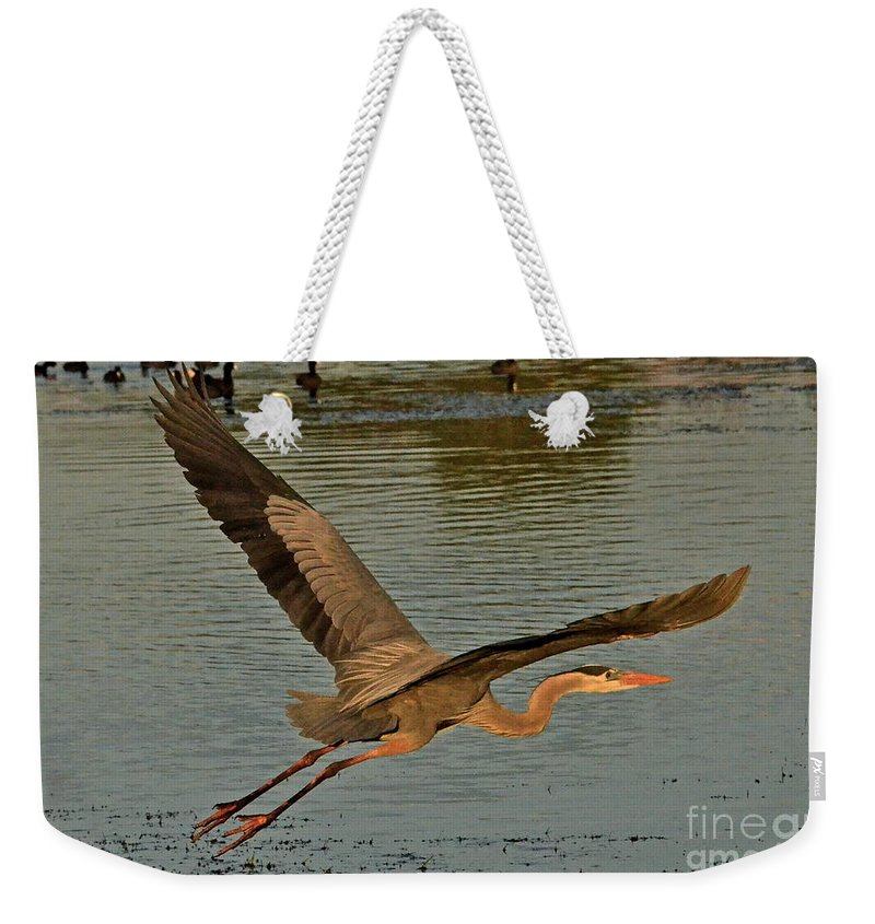 Heron Weekender Tote Bag featuring the photograph Sunset Flight by Carol Bradley