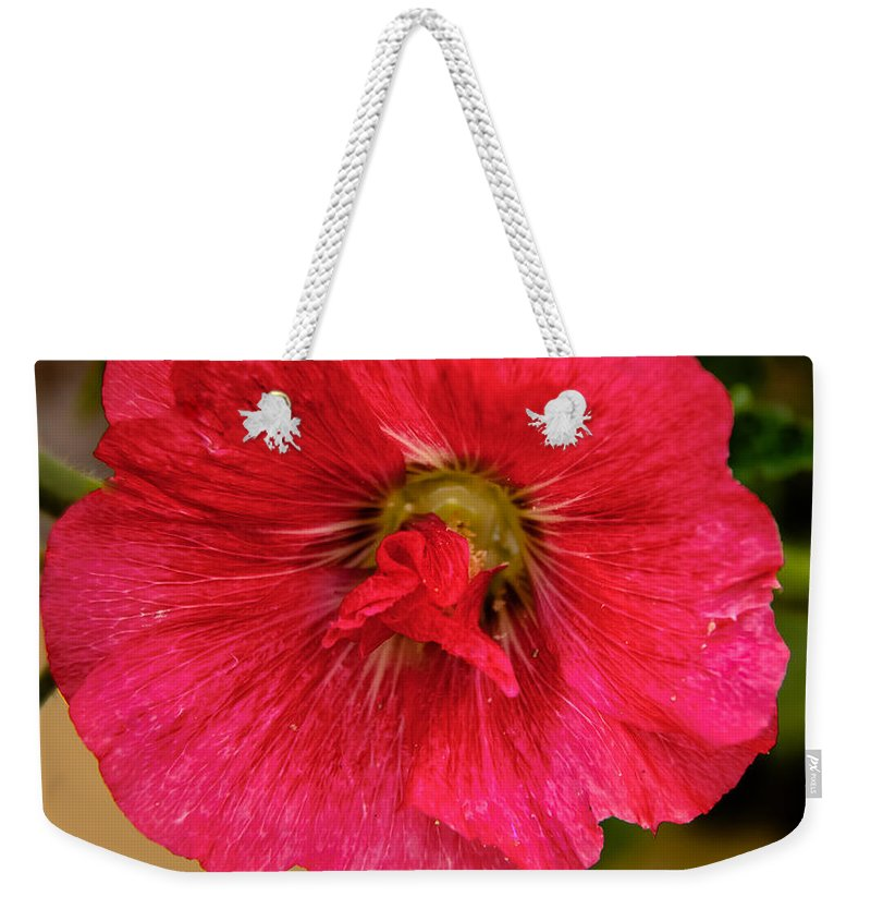 Alcea Weekender Tote Bag featuring the photograph The Red One by Robert Bales